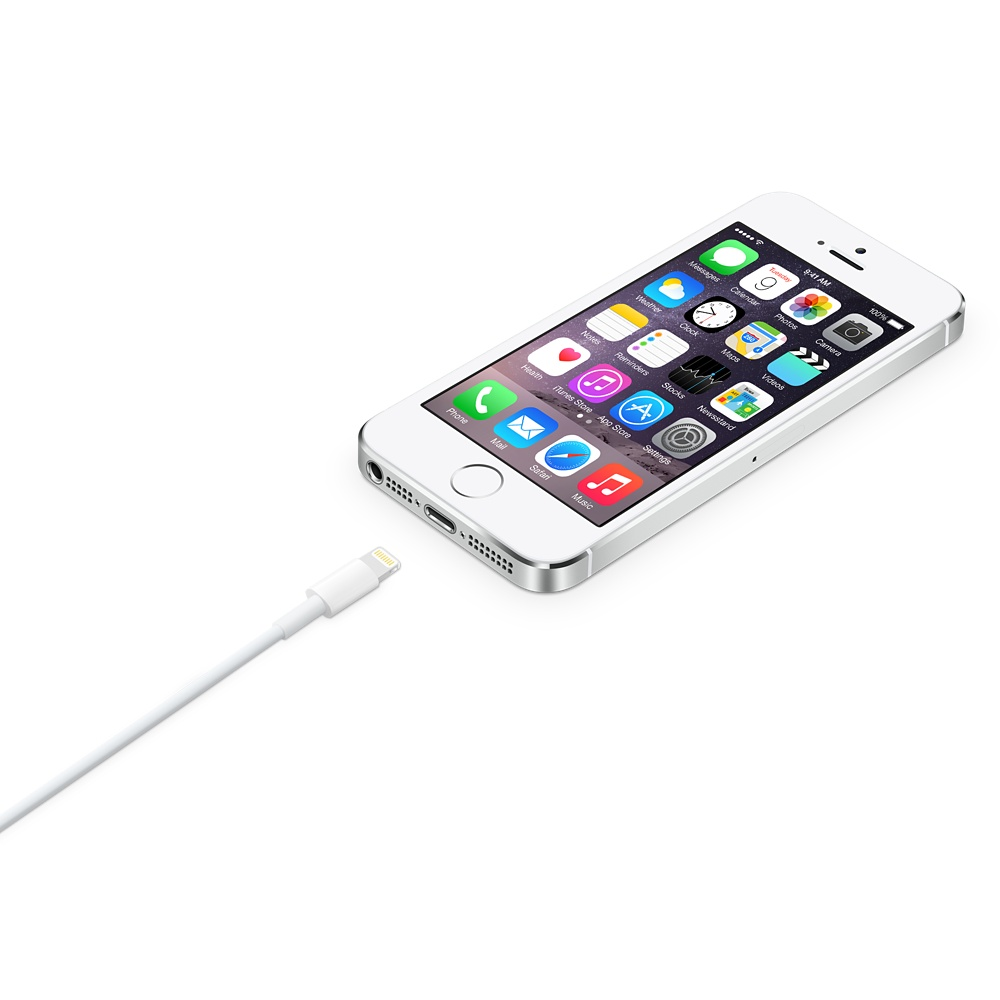 Buy the Apple Original Lightning to USB Cable -2M ( MD819AM