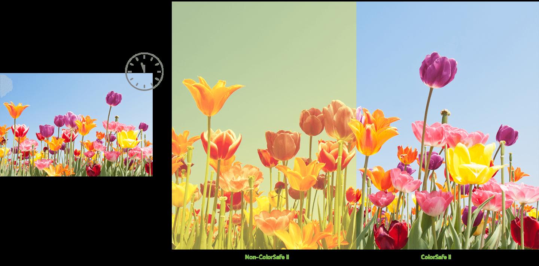 _20171123163438_ColorSafe_II.png (1579?779)