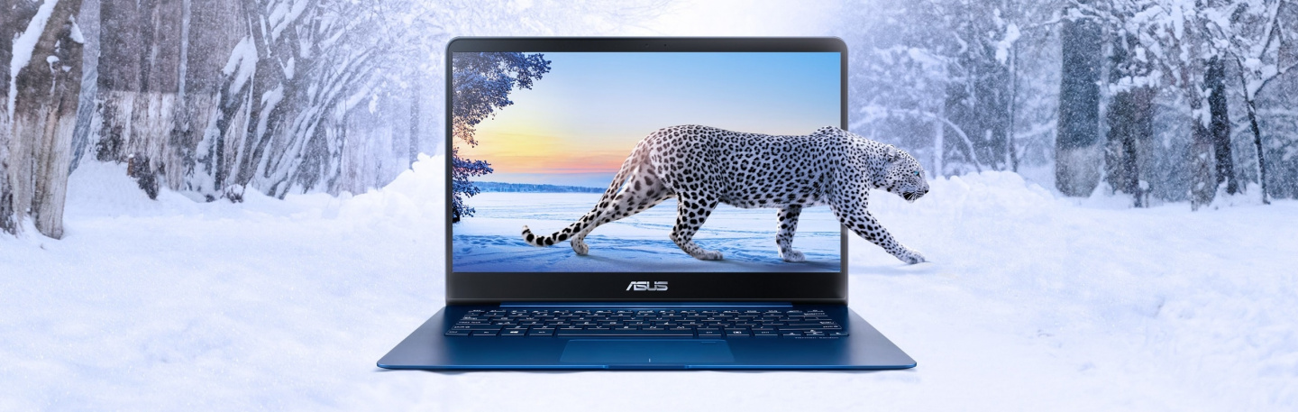 Buy the ASUS Last Demo Units Zenbook UX430UN-GV129T Premium
