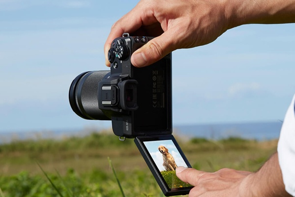 Picture of Canon m50 camera taking a photo in a field