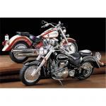 Tamiya Motorcycle Series No.80 - 1/12 - Yamaha XV1600 Roadster 1999